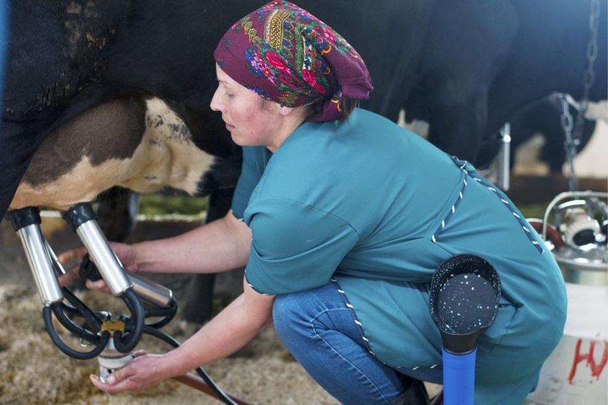 Как избавиться от коровьего вируса?